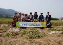 [구미]송정동, 2018년 농촌일손돕기 실시