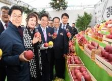 [경북도청]서울광장을 경북 사과로 붉게 물들이다!