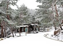 [경북도청]즐거운 명절, 가족나들이는 경북의 산림으로