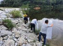 [기타기관]경북도, 붕어‧잉어 치어 방류로 낙동강 생태계 복원한다