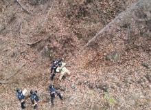 [경북소방]산림화재 진압역량강화 소방훈련 실시