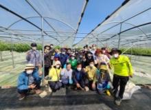 [구미]샤인머스켓 농작업 전문인력 양성,